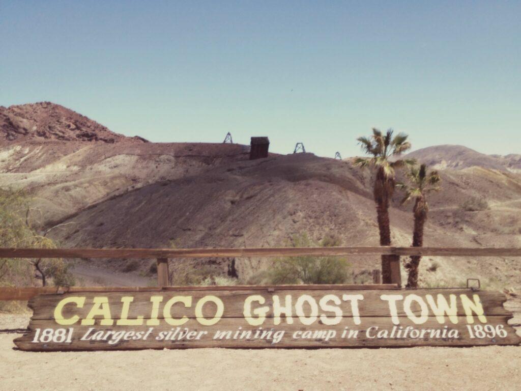 Calico 02