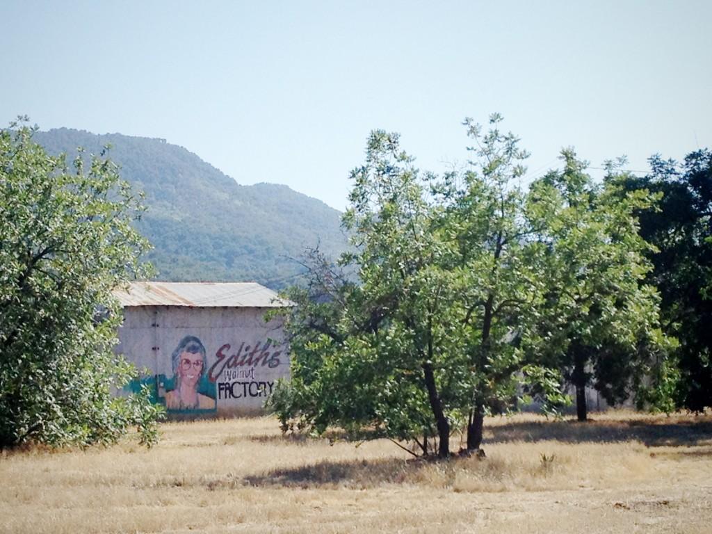 Edith's Walnut Factory