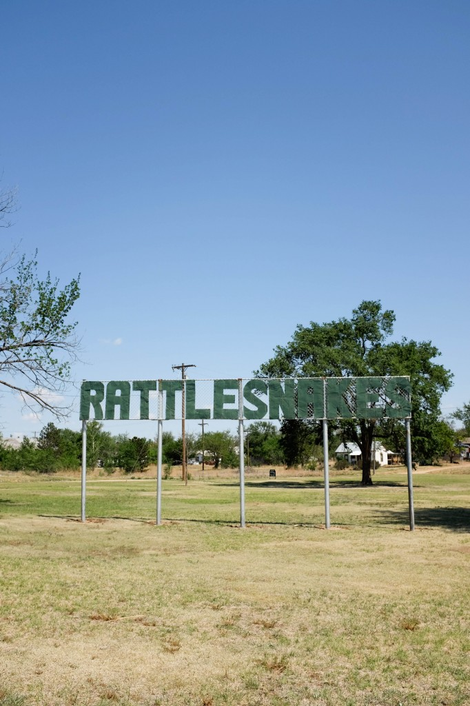 Shamrock Amarillo McLean Rattlesnakes Sign Route 66