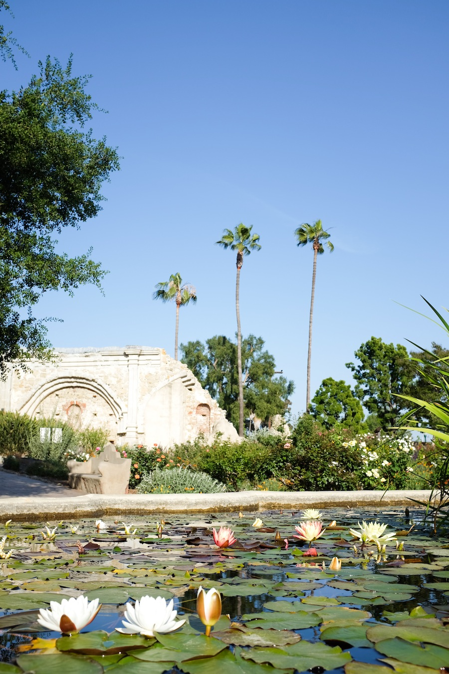 Mission San Juan Capistrano - Legal Miss Sunshine