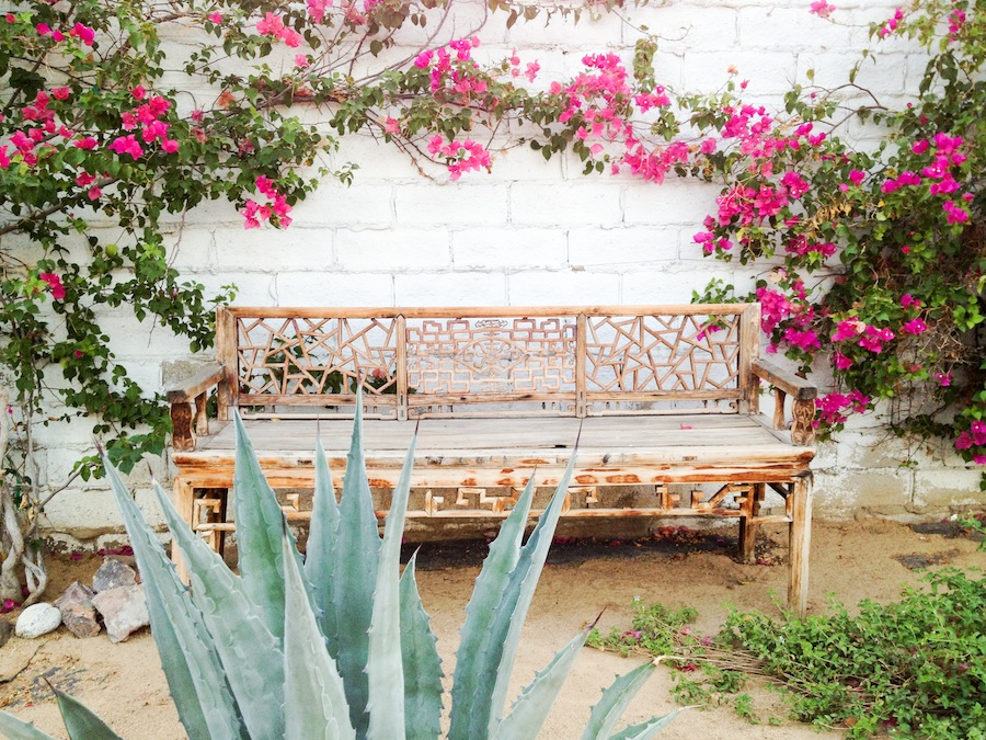 Weekend Trips from Los Angeles // Legal Miss Sunshine