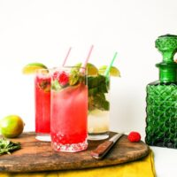 Sparkling Raspberry Mojito Recipe // Salty Canary