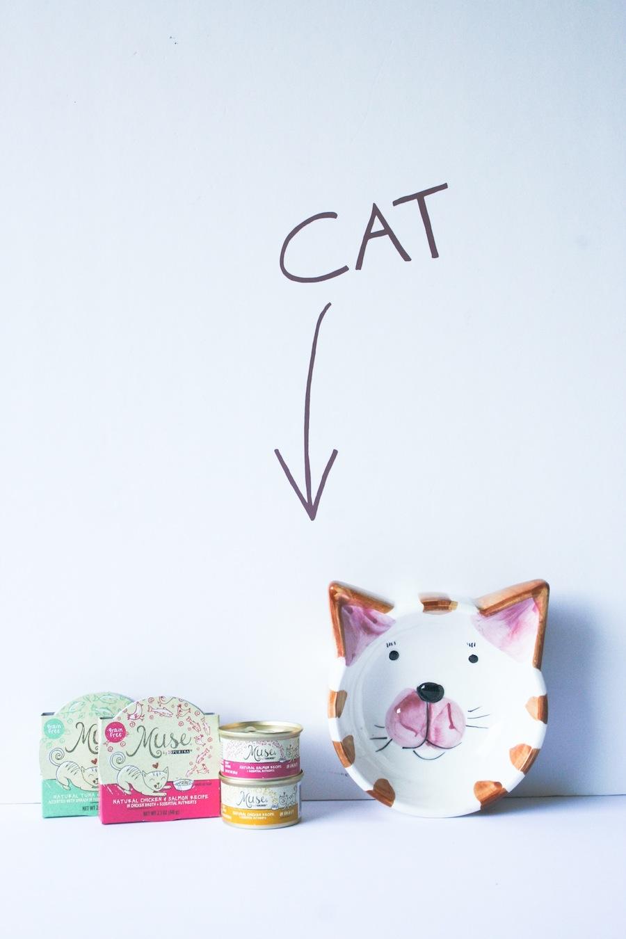 DIY Cat Food Sign // Legal Miss Sunshine