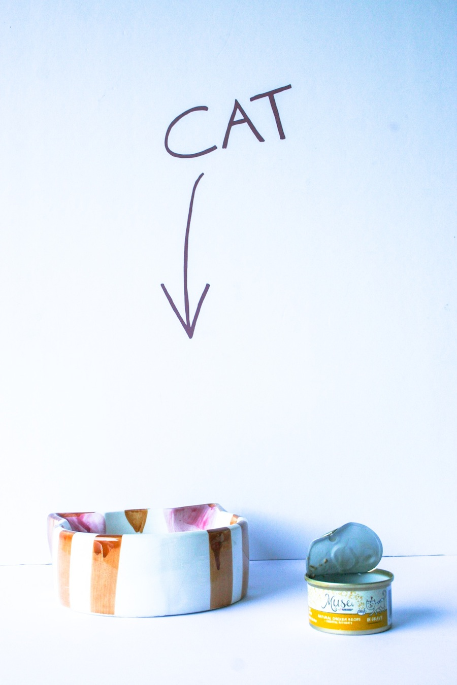 DIY Cat Food Sign // Legal Miss Sunshine