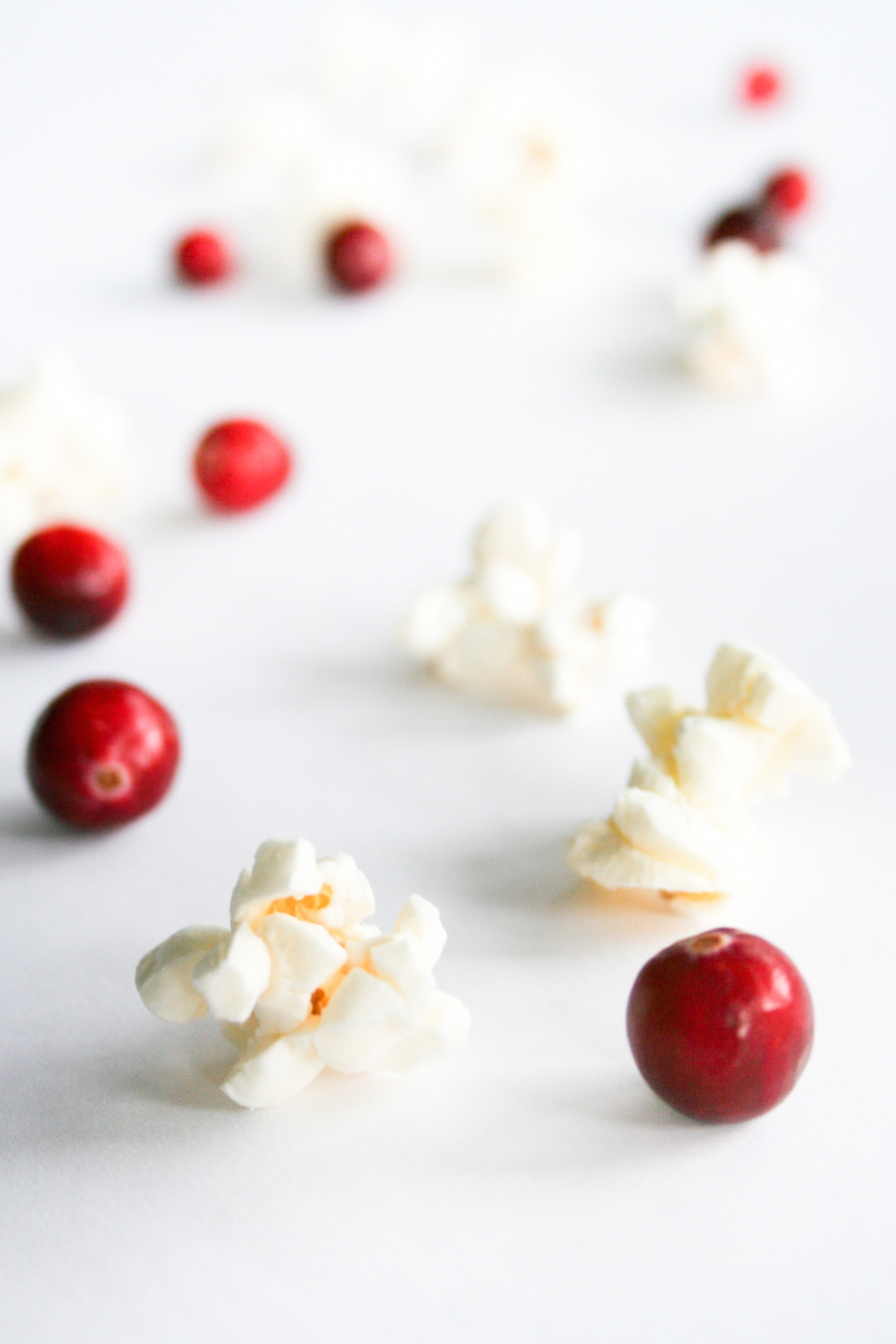 DIY Old-Fashioned Cranberry Popcorn Garland - Salty Canary