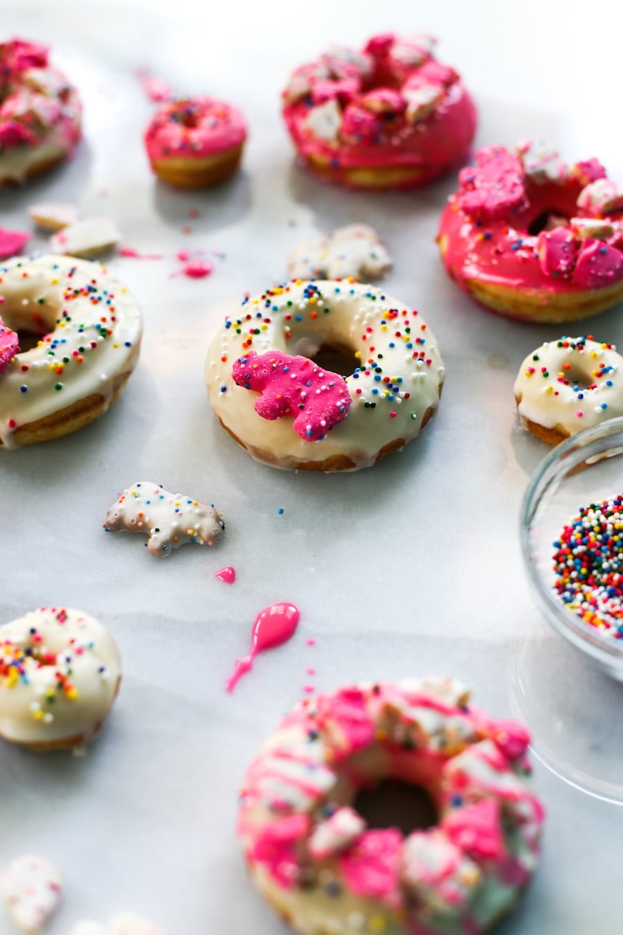 Animal Circus Cookie Donuts