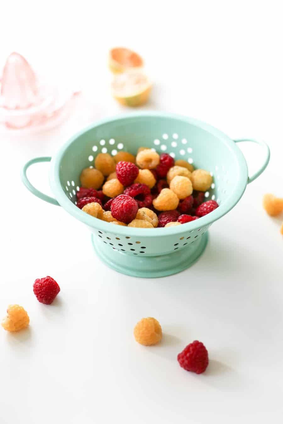 Raspberry Tangerine Popsicles Recipe // Salty Canary