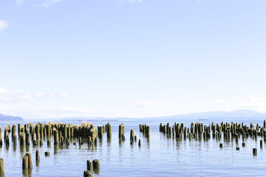 Cannon Beach side trip from Portland, Oregon // Salty Canary