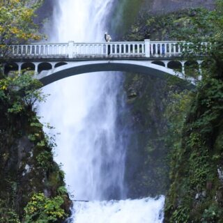 Multnomah Falls in Portland, Oregon // Salty Canary