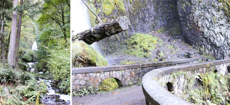 Wahkeena Falls in Portland, Oregon // Salty Canary