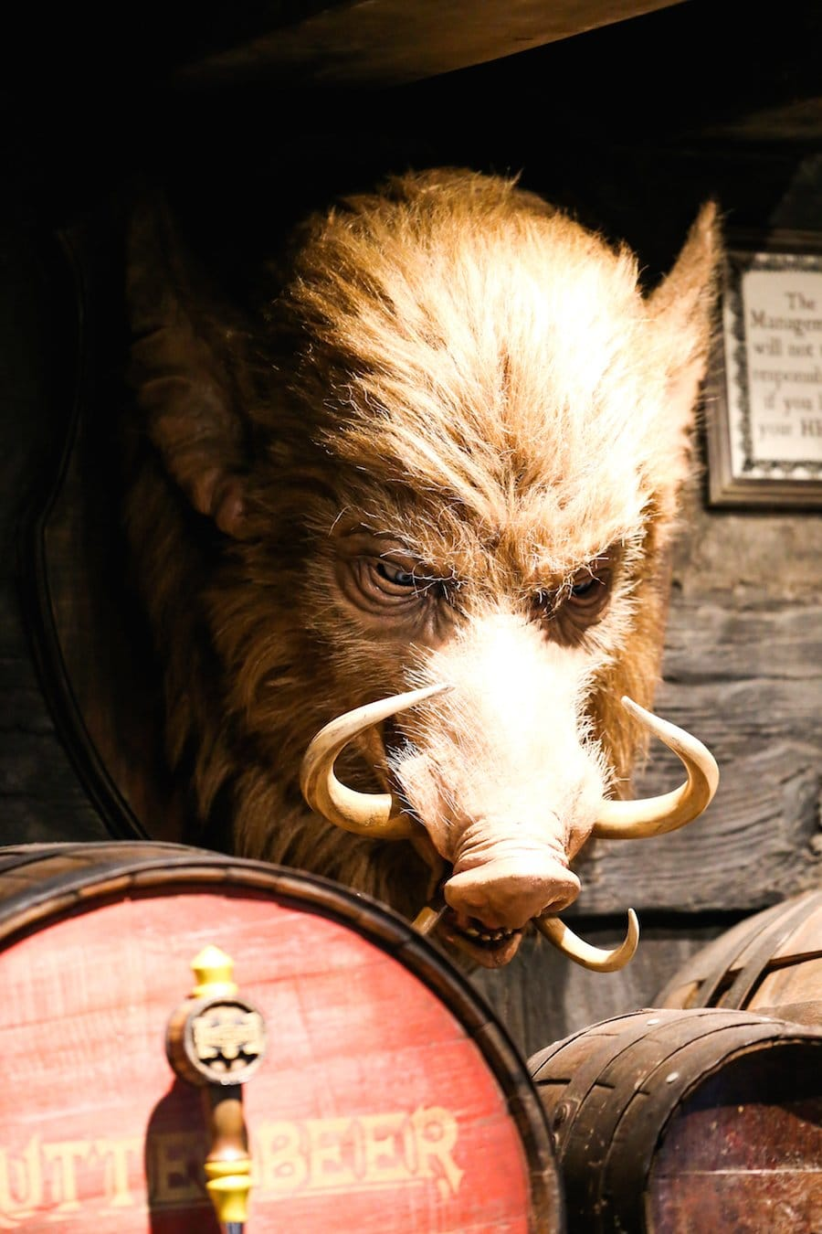 Hog's Head Pub at the Wizarding World of Harry Potter at Universal Studios Hollywood // Salty Canary