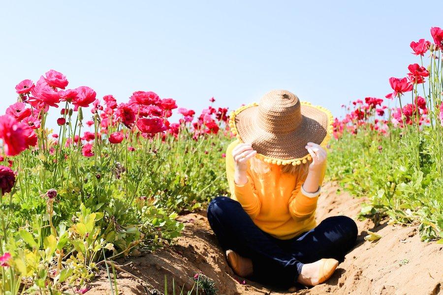 Carlsbad Flower Fields // Salty Canary