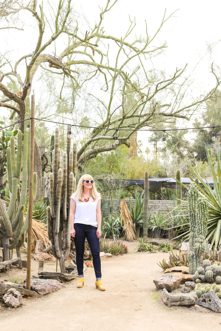 Alt Summit Instagram Tour of Palm Springs - Moorten Botanical Garden // Salty Canary