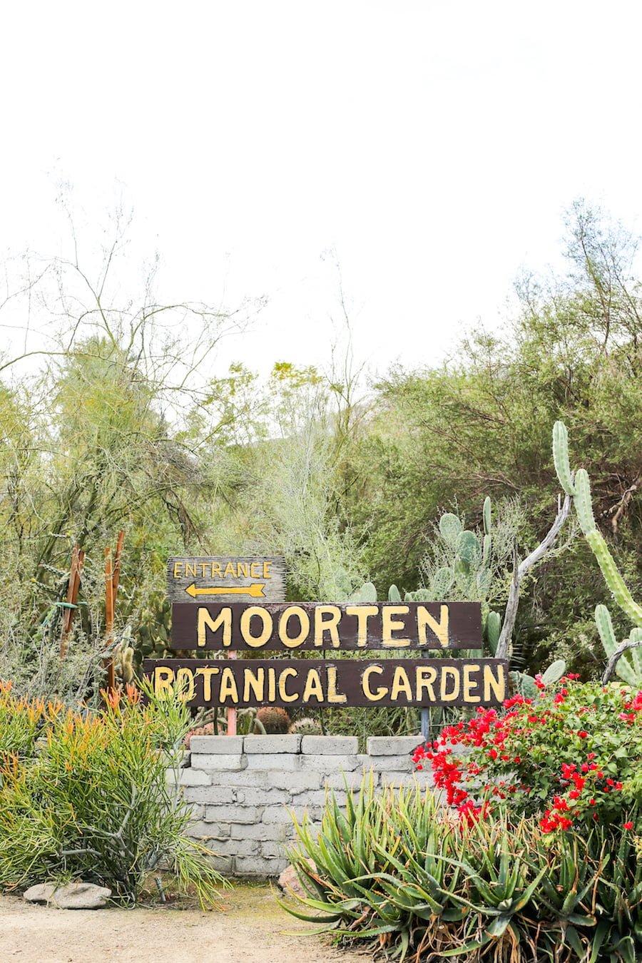 Alt Summit Instagram Tour of Palm Springs - Moorten Botanical Garden // Salty Canary