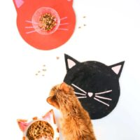 DIY Kitty Cat Placemats // Salty Canary