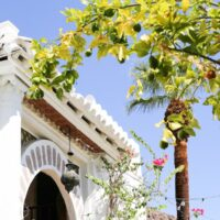 Korakia Pensione in Palm Springs | Salty Canary