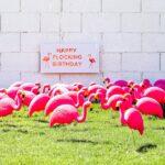 Happy Flocking Birthday with a Flamingo Flocking // Salty Canary