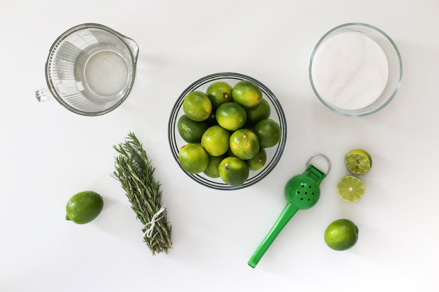 Perfect Summer Concert Picnic with Rosemary Limeade Recipe // Salty Canary
