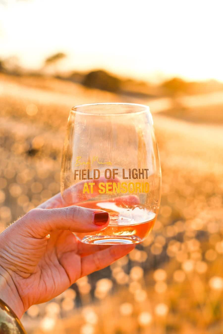 Field of Lights in Paso Robles // Salty Canary