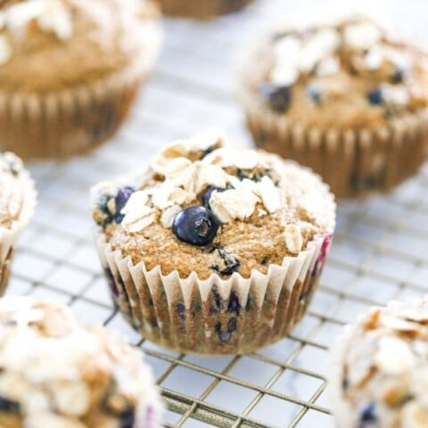 Apple, Blueberry, & Banana Sugar-Free Oat Muffins